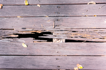 damaged: Wooden board damaged by termite