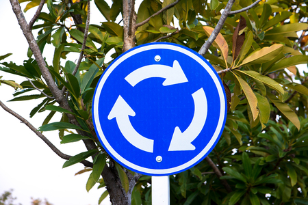 roundabout: Blue roundabout traffic sign with tree background