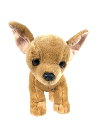 stuffed: Brown dog stuffed doll isolated on white background