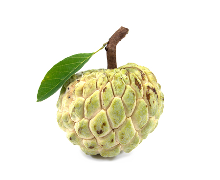 Sugar Apple with leaf (custard apple, Annona, sweetsop) isolated on white background