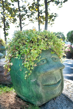 Stone human head with vine in the park
