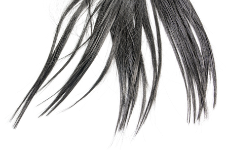 Close up vertical long black hair isolated on white background Stock fotó