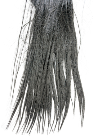 Vertical long black hair isolated on white background Stock fotó