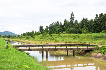Concrete bridge and irrigation canal with tree background