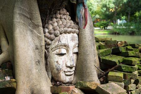 Closeup of Buddha head at bodhi tree in the temple