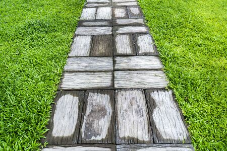 Concrete stone pavement with grass lawn field background. Cement rectangle block shape on grass yard