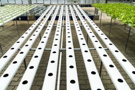 Hydroponics pipes with hole pattern design in public greenhouse in the garden background. Hydroponic metal pipe track with stand in nursery