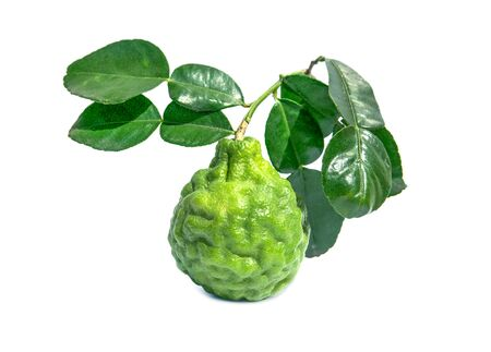 kaffir lime fruit with leaves isolated on white background. Leech lime or Bergamot with green leaf isolated Stockfoto