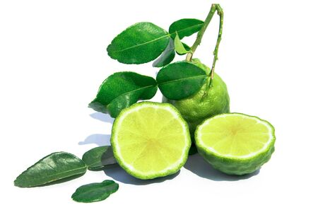 Kaffir lime fruit with green leaves isolated on white background. Cut Leech lime or Bergamot with leaf isolated