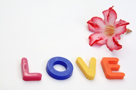 Word LOVE made from Plastic isolated over white background photo