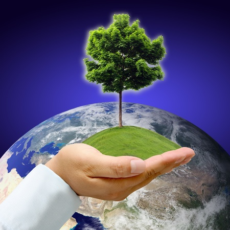 water ecosystem: Male hand holding the Earth with tree