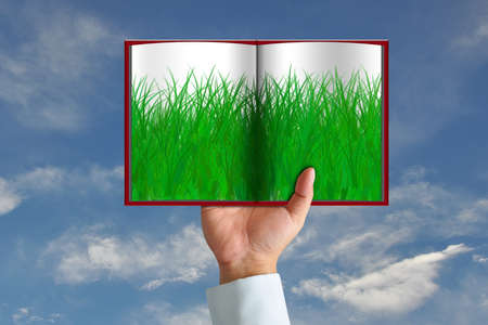Green grass in book and wooden sign on blue sky photo
