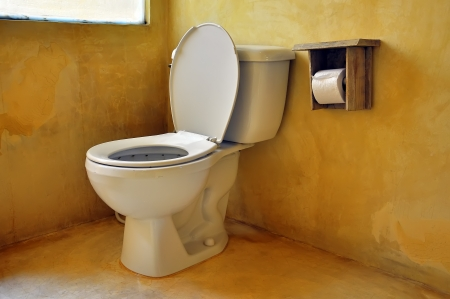 Toilet seat and paper in nice clean bathroom Stock Photo