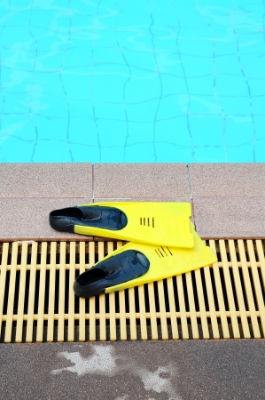 flipper: Nageoire jaune pr?s d'une piscine