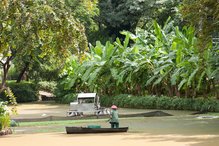 abundant: Worker on boat collects garbage in the canal with green abundant forest background. Stock Photo