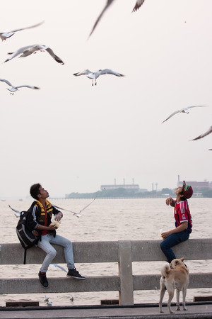 tourist attractions: Samut Prakan, Thailand - December 14, 2015: Two young men feeding birds while group of seagull fly over at Bang Pu seaside-has many migratory birds live therefore there become tourist attractions