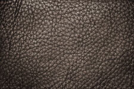 brown leather texture: Brown leather texture or leather background for design with copy space for text or image.