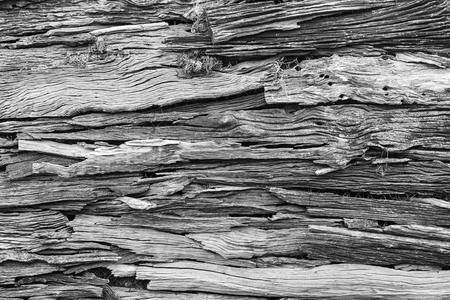 Wood texture, Wood background for interior, exterior or industrial construction concept design.