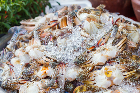 Blue swimming crab or Flower crab with ice in seafood market for cooking. Stock Photo