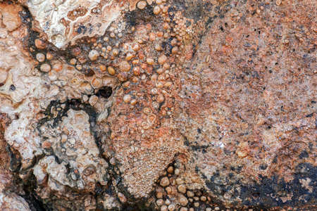 Pebbles stone texture and background for design