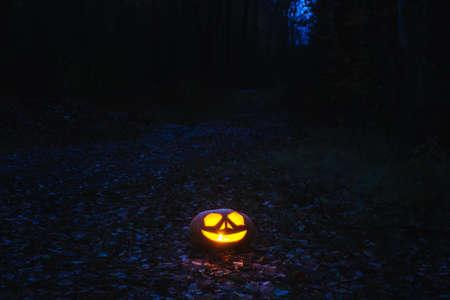 lying in: Lying in the woods pumpkin with light inside