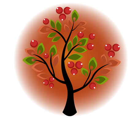 shrub: tree or shrub growing berries and leaves