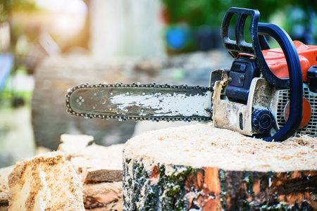 Chainsaw on a log with sawdust at shallow depth of field