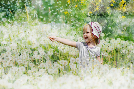baby laughs in a dandelion field 写真素材