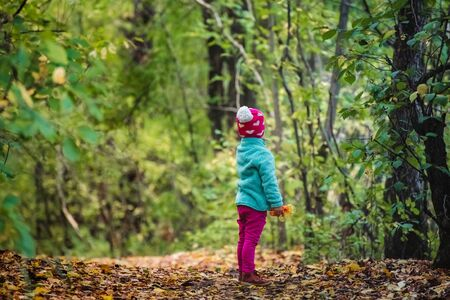 Rear view child looking forward standing alone in forest Stock Photo