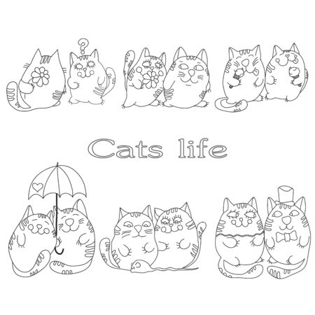 Vector drawing cats on a white background
