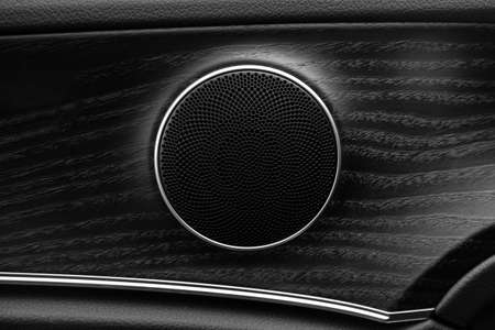 car speaker in wood trim