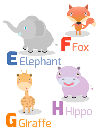 g giraffe: Cute alphabet with funny animals from E to H , Illustration of alphabet with animals E F G H ,elephant, fox, giraffe,hippo, Funny cartoon animals on white background, Vector Illustration.