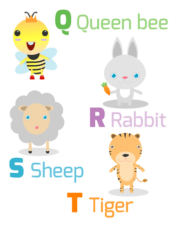 vocabulary: Cute alphabet with funny animals from Q toT , Illustration of alphabet with animals Q R S T ,queen bee, rabbit, sheep, tiger, Funny cartoon animals on white background, Vector Illustration.