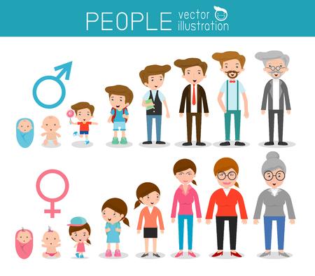 Generazione di persone dai bambini agli juniores. tutte le categorie di età. isolato su sfondo bianco, generazione di persone uomo e donna dai neonati agli anziani, Fasi di sviluppo, la progettazione illustrazione. Archivio Fotografico - 55420138