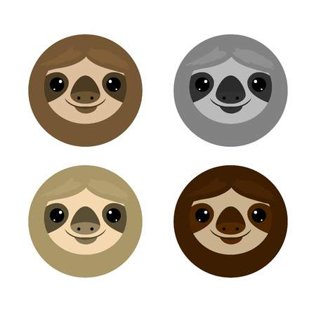 oso perezoso: Cute face sloth, Animals. sloth on white background Vector Illustration Vectores