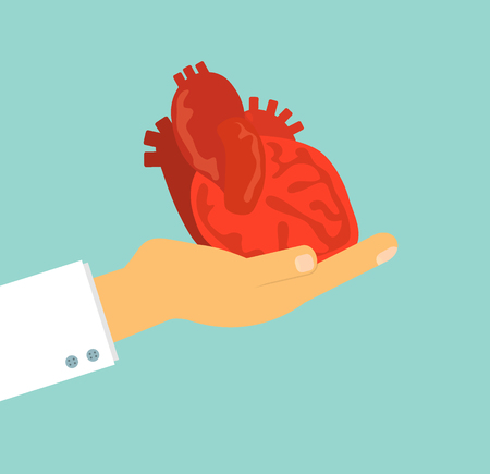 heart health: doctors hand holding human heart on background, vector illustration concept for health care and medical