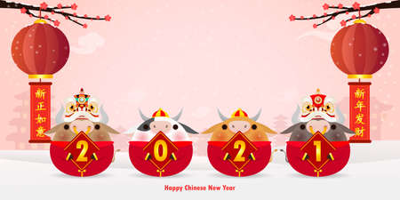 Four little ox and lion dance holding a sign golden, Happy Chinese new year 2021 year of the ox zodiac, cute Little cow Cartoon isolated vector illustration, Translation: Happy Chinese new
