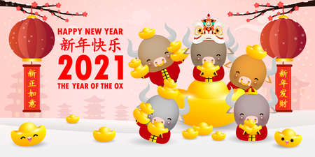 Happy Chinese new year 2021, little ox and lion dance holding chinese gold ingots, the year of the ox zodiac,cute cow Cartoon calendar isolated vector illustration, Translation: Happy Chinese new year