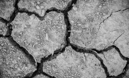 Close up heart in dry ground