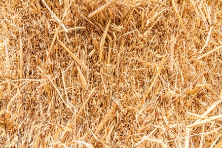 close up detailed view  stack of hay