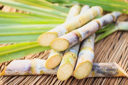 Close up de canne à sucre Banque d'images