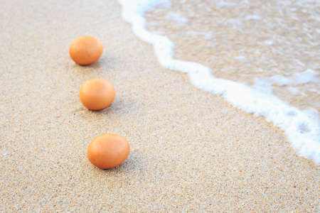 Egg on the beach photo