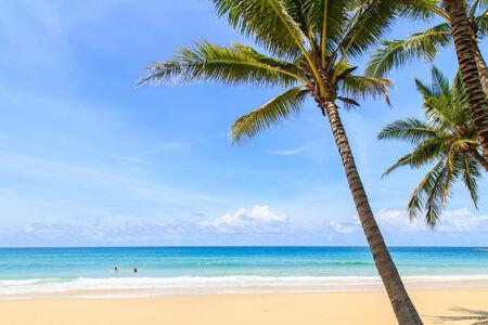 surin: Tropical beach in Phuket, Thailand Stock Photo