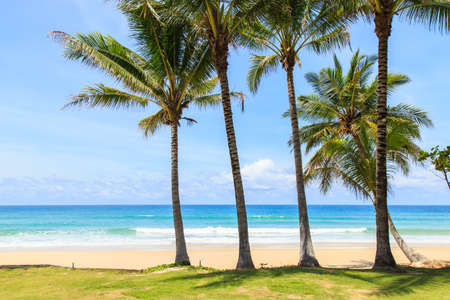kata: Tropical beach in Phuket, Thailand Stock Photo