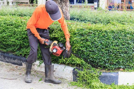 bush trimming: A man trimming hedge at the street Stock Photo