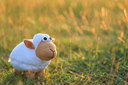 牧草地での羊の人形