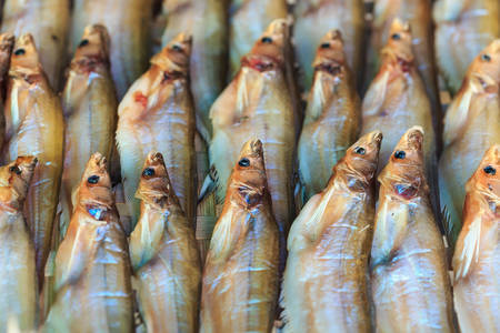 Close up dry fish in Thailand market photo