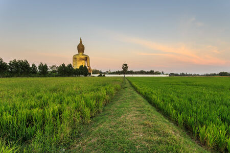 Big golden buddha statue in Thailand photo