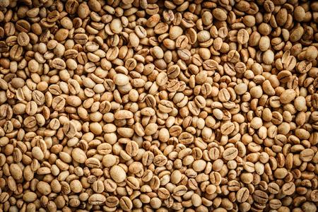 kopi: Kopi Luwak or civet coffee