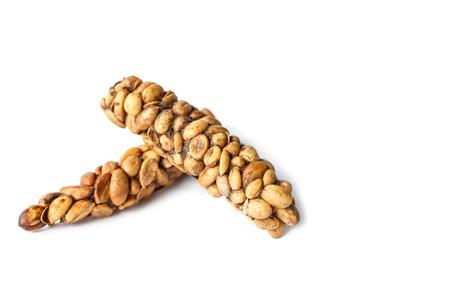 kopi: Kopi Luwak or civet coffee isolated on white